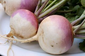 turnips-purple