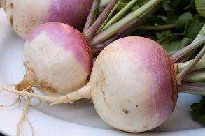 turnips-purple
